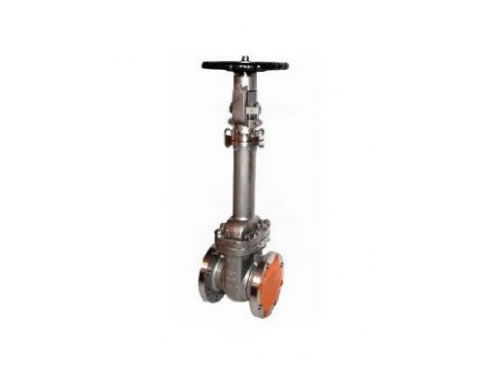 API Flanged Stainless Steel Bellows Seal Gate Valve