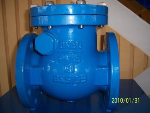 DIN Cast Steel Swing Type Check Valve