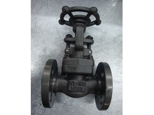 Flanged Forged Steel Valves